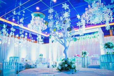 Wedding Decorator in Udaipur, best wedding planner in udaipur, wedding at radission blu udaipur, wedding at jagmandir udaipur, destination wedding planner udaipur, best weddings in udaipur, radission blu udaipur